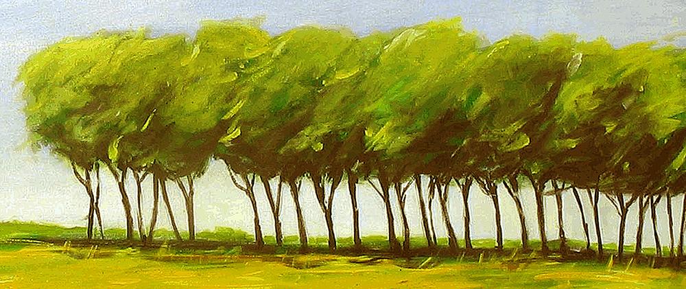 bomen-2